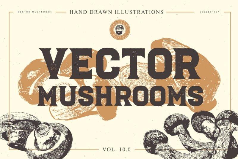 Vector Mushrooms