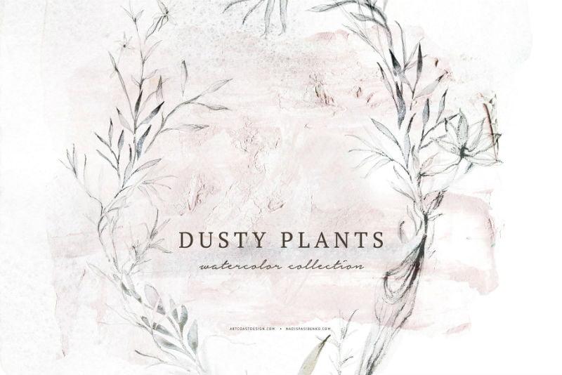 Watercolor Dusty Plants