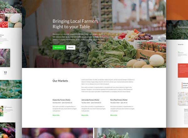 Farmers Market Pre-made Divi WordPress Website Design