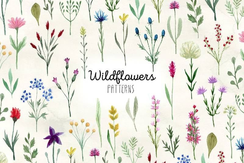 Watercolor Wildflowers. Patterns